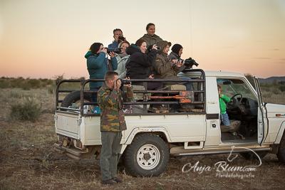 Pferdefotografie Namibia
