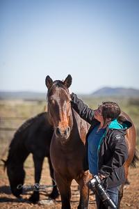 Pferdefotogrfaie im Paddock Namibia