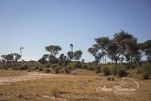 Trockenfluss Namibia
