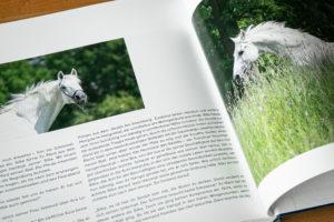 Faszination Frauen & Pferde, Anja Blum
