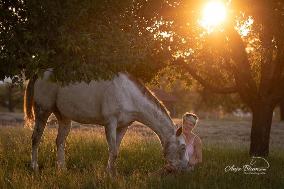 Pferdefotografie bei Sonnenaufgang im Freien